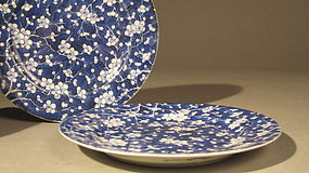 Pr Japanese Blue White Porcelain Hawthorne Motif Dishes